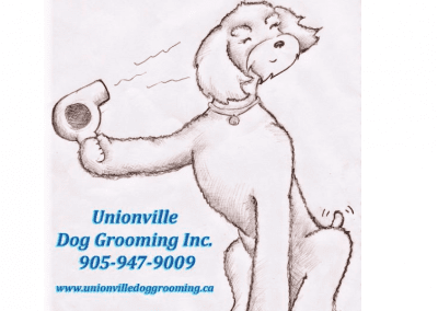 Unionville Dog Grooming Inc.